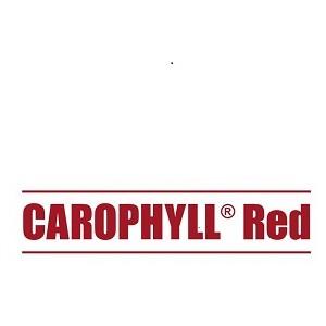 ΧΡΩΣΤΙΚΗ ΚΟΚΚΙΝΗ CAROPHYLL RED 200γρ